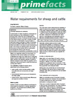 Water Requirements for Sheep and Cattle