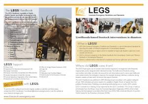 LEGS flyer cover